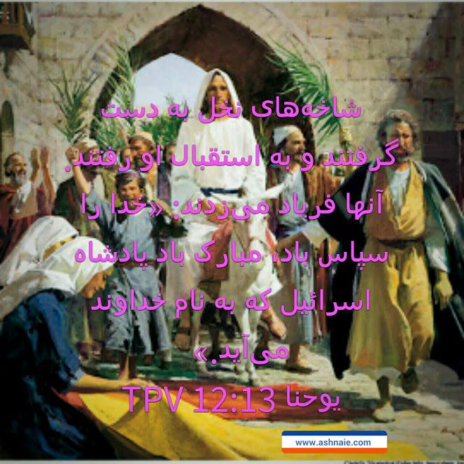یوحنا باب ۱۲ آیه ۱۳