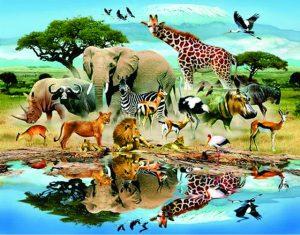 آیا حیوانات به بهشت می روند؟ آیا حیوانات هم روح دارند؟