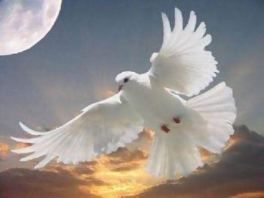 ثمرات روح القدوس