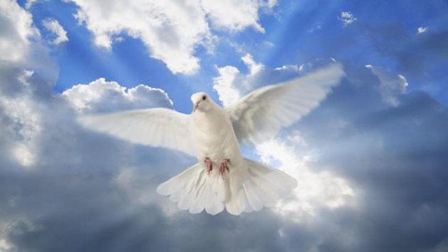 ثمرات روح القدوس قسمت سوم ( راز )