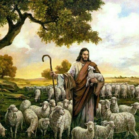 """""""عیسی مسیح برۀ خداست"""" یعنی چه؟"""