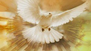آیا روح القدس هیچ گاه ایماندار را ترک نمی کند؟